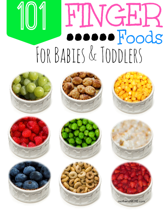 101 Finger Foods by Mothers Niche