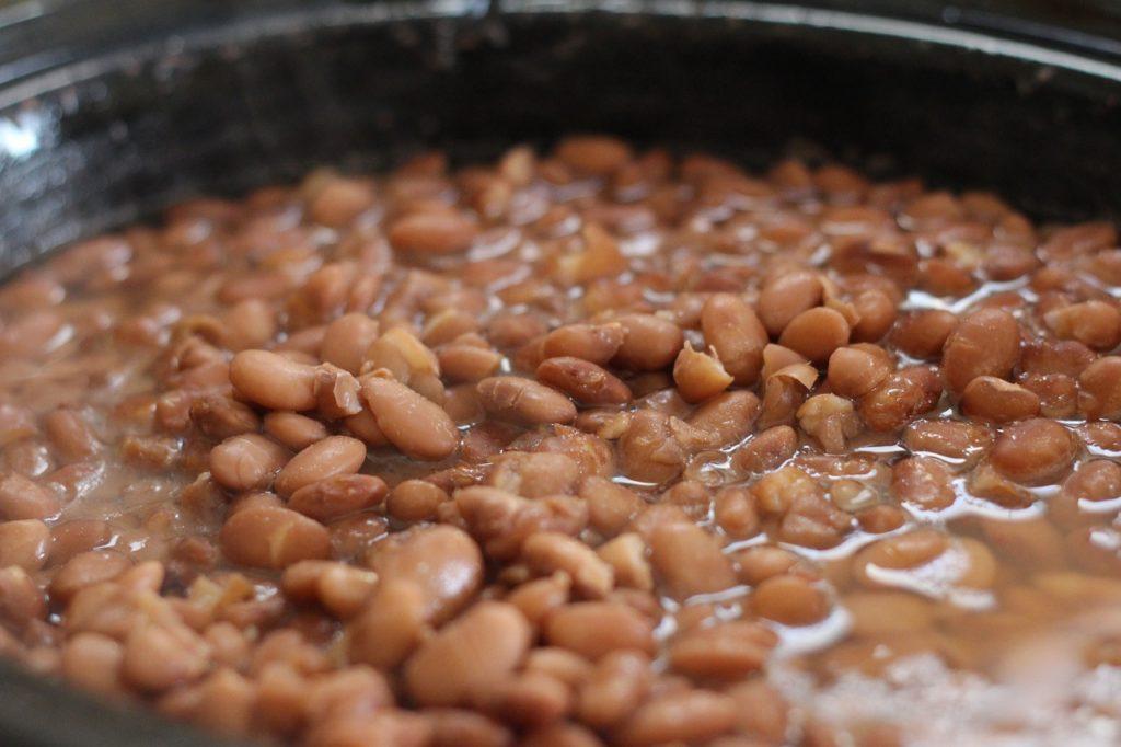 pinto-beans-356622_1280