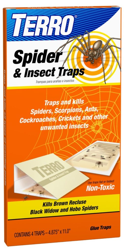 spider and insect traps