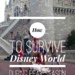 How to Survive Disney World During the Peak Season